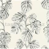 Vliesové tapety na zeď Greenery fíkusové listy černé na bílém podkladu