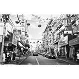 Luxusní vliesové fototapety San Francisco - černobílé, rozměr 418,5 cm x 270 cm