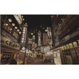 Luxusní vliesové fototapety Tokyo - sépie, rozměr 418,5 cm x 270 cm