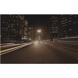 Luxusní vliesové fototapety Sao Paulo - sépie, rozměr 418,5 cm x 270 cm