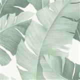 Luxusní vliesové tapety na zeď Avalon velké listy zelené na bílém podkladu