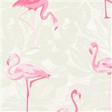 Vliesové tapety na zeď Boys & Girls plameňáci růžoví na šedém podkladu