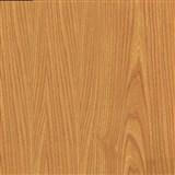 Samolepící folie  - japonský jilm 90 cm x 15 m
