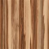 Samolepící folie  - baltimorský ořech 90 cm x 15 m