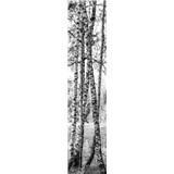 Samolepící dekorační pásy břízy rozměr 60 cm x 260 cm