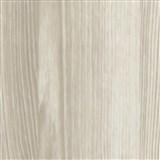 Speciální dveřní renovační folie borovice Atlanta 90 cm x 2,1 m (cena za kus)