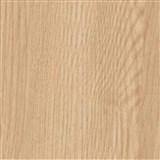 Speciální dveřní renovační fólie jasan Richmond 90 cm x 2,1 m (cena za kus)