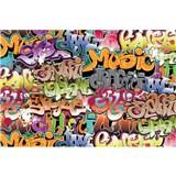 Vliesové fototapety graffiti rozměr 375 cm x 250 cm