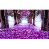 Fototapety alej květů rozměr 368 cm x 254 cm