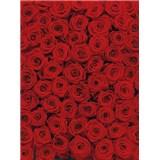 Fototapety červené růže rozměr 194 cm x 270 cm
