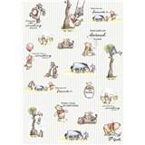 Vliesové fototapety Disney Medvídek Pú proužky rozměr 200 cm x 280 cm
