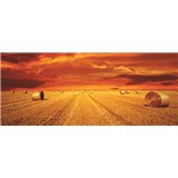 Vliesové fototapety západ slunce rozměr 250 cm x 104 cm