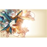 Fototapety kolibřík rozměr 368 cm x 254 cm