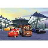 Fototapety Disney Cars 3 Mc Queen a Burák stanoviště rozměr 368 cm x 254 cm