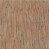 Samolepící tapety - bambus 67,5 cm x 15 m