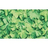 Samolepící tapety zelené listí 90 cm x 15 m