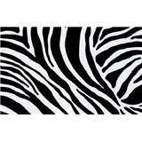 Samolepící tapety - zebra 67,5 cm x 15 m