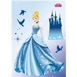 Samolepky na zeď Disney Princess Dream rozměr 50 cm x 70 cm
