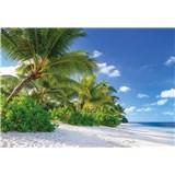 Fototapety palmy na pláži rozměr 368 cm x 254 cm