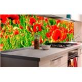 Samolepící tapety za kuchyňskou linku vlčí máky rozměr 180 cm x 60 cm