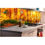 Samolepící tapety za kuchyňskou linku slunný les rozměr 180 cm x 60 cm