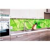 Samolepící tapety za kuchyňskou linku listové žíly rozměr 260 cm x 60 cm