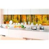 Samolepící tapety za kuchyňskou linku les na podzim rozměr 350 cm x 60 cm