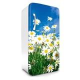 Samolepící tapety na lednici kopretiny rozměr 120 cm x 65 cm