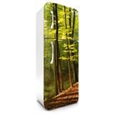 Samolepící tapety na lednici les na podzim rozměr 180 cm x 65 cm