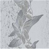 Vliesové tapety na zeď Natalia popínavé listy šedé