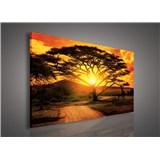 Obraz na plátně Austrálie při západu slunce 75 x 100 cm