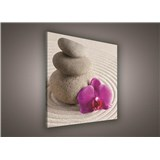 Obraz na plátně wellness orchidej 80 x 80 cm