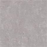 Vliesové tapety na zeď Trendwall omítkovina šedá