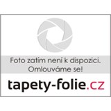 Ubrusy návin 20 m x 140 cm listy hnědé