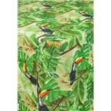 Ubrusy návin 20 m x 140 cm jungle s tukany s textilní strukturou