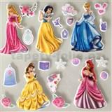 3D samolepky na zeď dětské princezny Disney