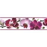 Samolepící bordura květy orchideje fialové 5 m x 8,3 cm