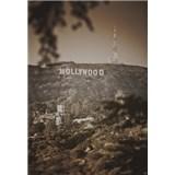 Luxusní vliesové fototapety Los Angeles - sépie, rozměr 186 cm x 270 cm