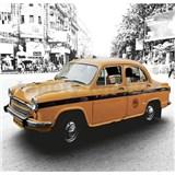 Luxusní vliesové fototapety Delhi - barevné, rozměr 279 cm x 270 cm