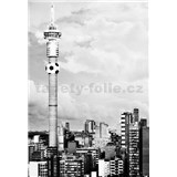Luxusní vliesové fototapety Johannesburg - černobílé, rozměr 186 cm x 270 cm