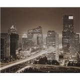 Luxusní vliesové fototapety Beijing - sépie, rozměr 325,5 cm x 270 cm