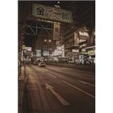 Luxusní vliesové fototapety Tokyo - sépie, rozměr 186 cm x 270 cm
