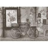 Luxusní vliesové fototapety Buenos Aires - barevné, rozměr 372 cm x 270 cm