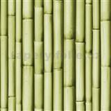 Vinylov� tapety na ze� Bluff bambus zelen�