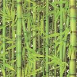 Vinylové tapety na zeď Replik bambus zelený