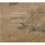 Luxusní vliesové fototapety letadlo, rozměr 300 cm x 270 cm