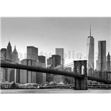 Fototapety New York rozměr 366 x 254 cm