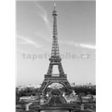 Fototapety La Tour Eiffel rozměr 183 cm x 254 cm