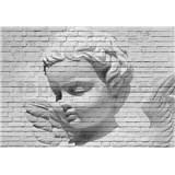 Fototapety anděl Angel Brick Wall rozměr 366 cm x 254 cm
