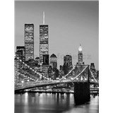 Fototapety Brooklyn Bridge rozměr 183 cm x 254 cm